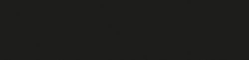 Logo_FN-neu